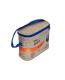 изотермическая сумка общий вид